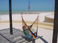 Hammock chair multicolor