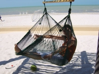 Hammock Chair nature